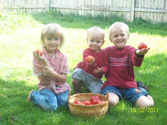 tomate-kids